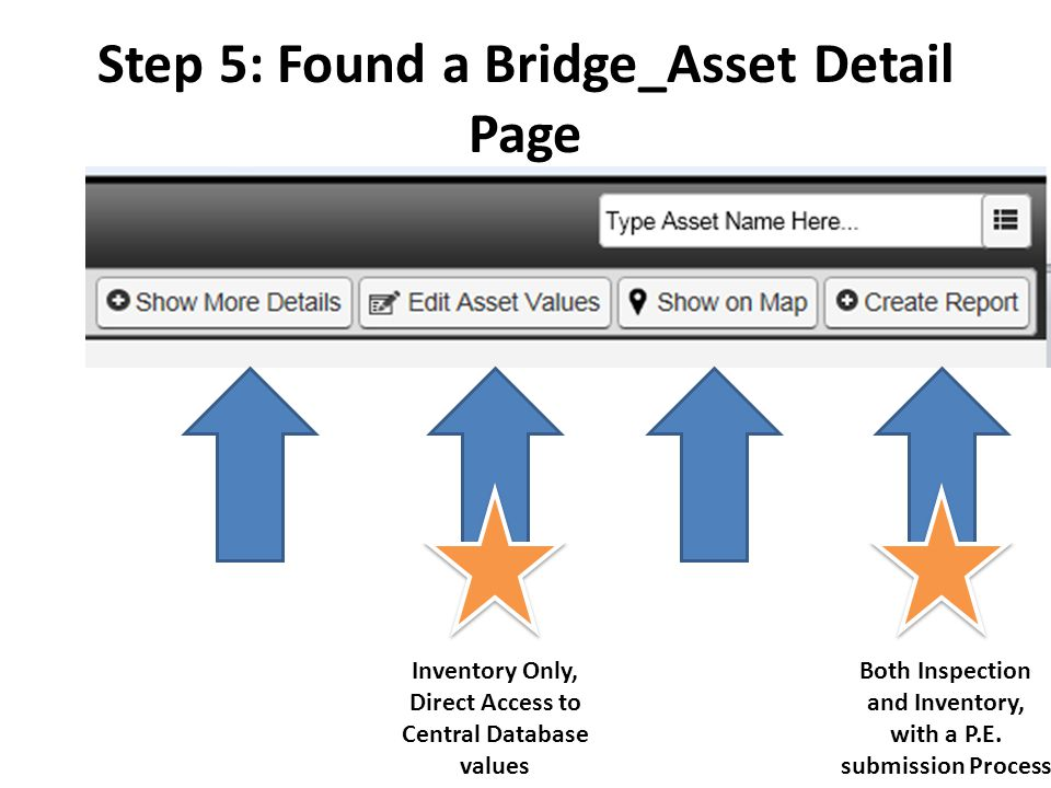 Step 5: Found a Bridge_Asset Detail Page