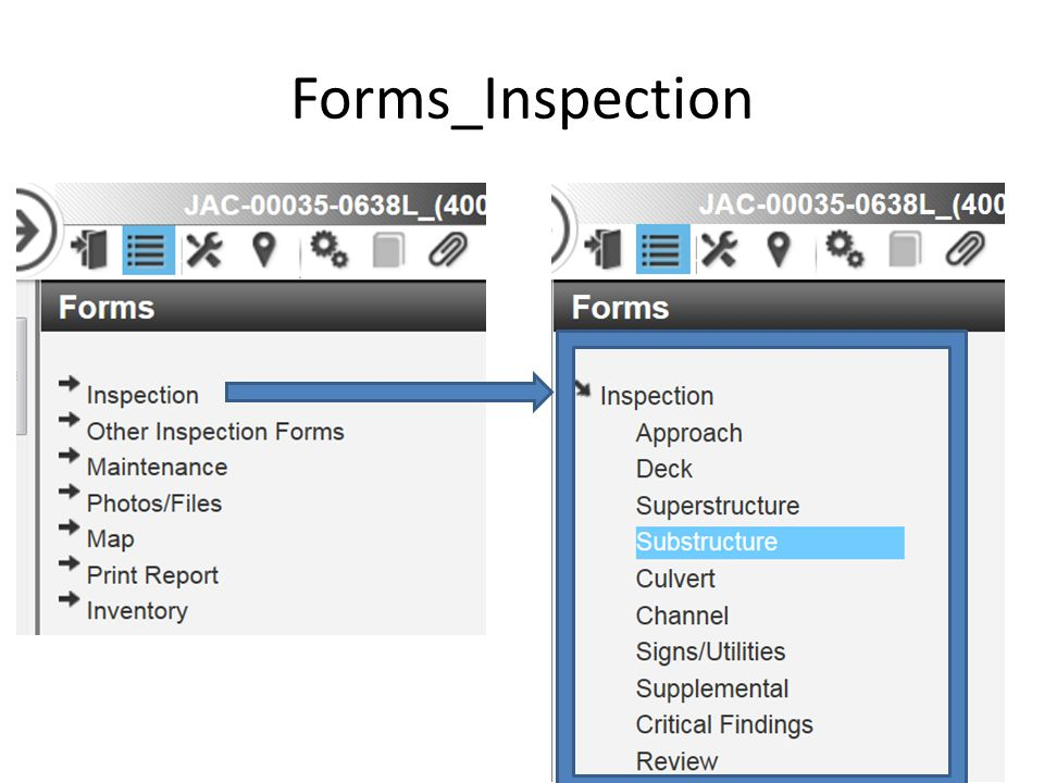 Forms_Inspection