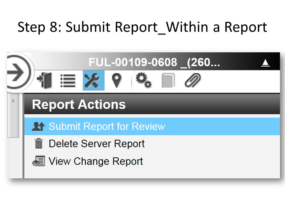 Step 8: Submit Report_Within a Report