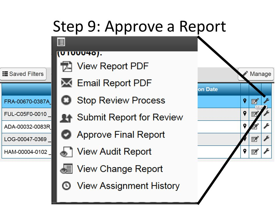 Step 9: Approve a Report