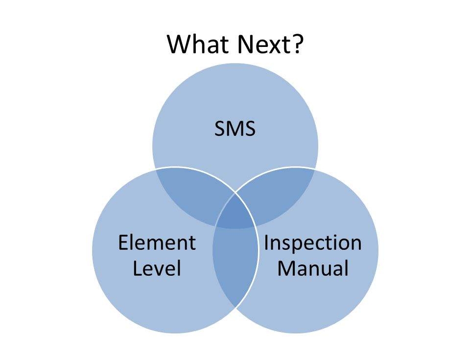 What Next SMS Inspection Manual Element Level BMS Support