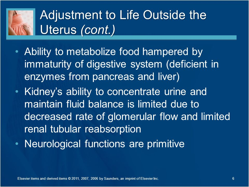 Adjustment to Life Outside the Uterus (cont.)