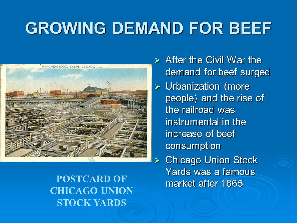 GROWING DEMAND FOR BEEF