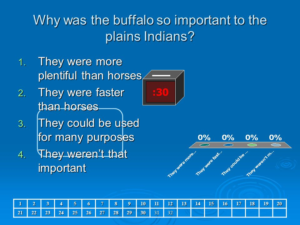 Why was the buffalo so important to the plains Indians