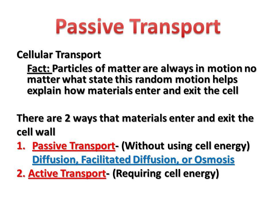 Passive Transport Cellular Transport