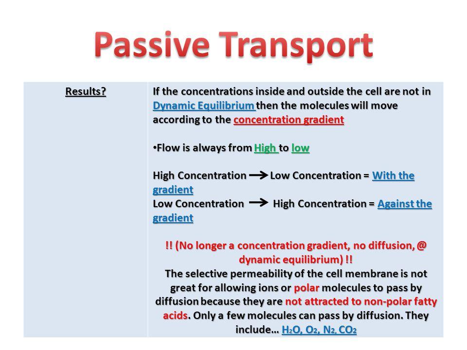 Passive Transport Results