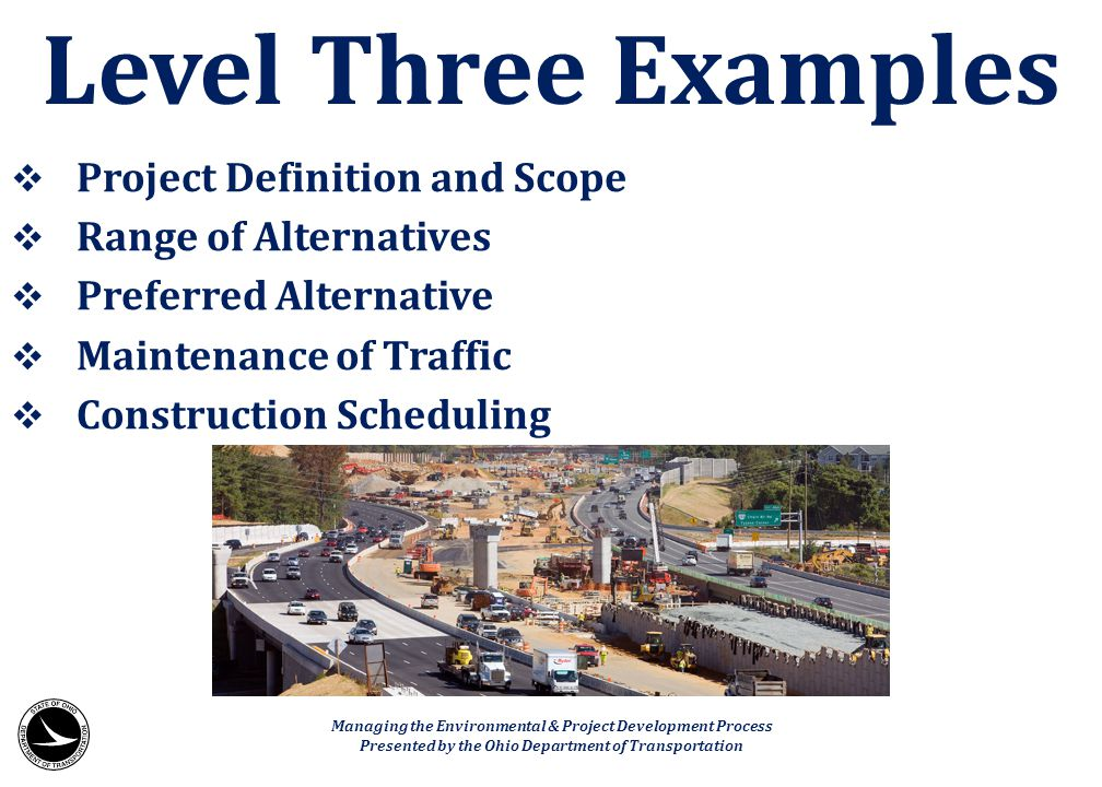 Level Three Examples Project Definition and Scope