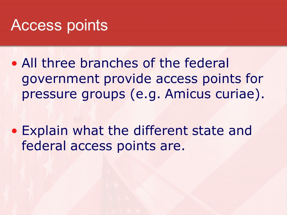 Access points All three branches of the federal government provide access points for pressure groups (e.g. Amicus curiae).