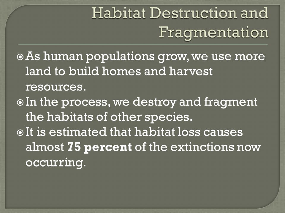 Habitat Destruction and Fragmentation