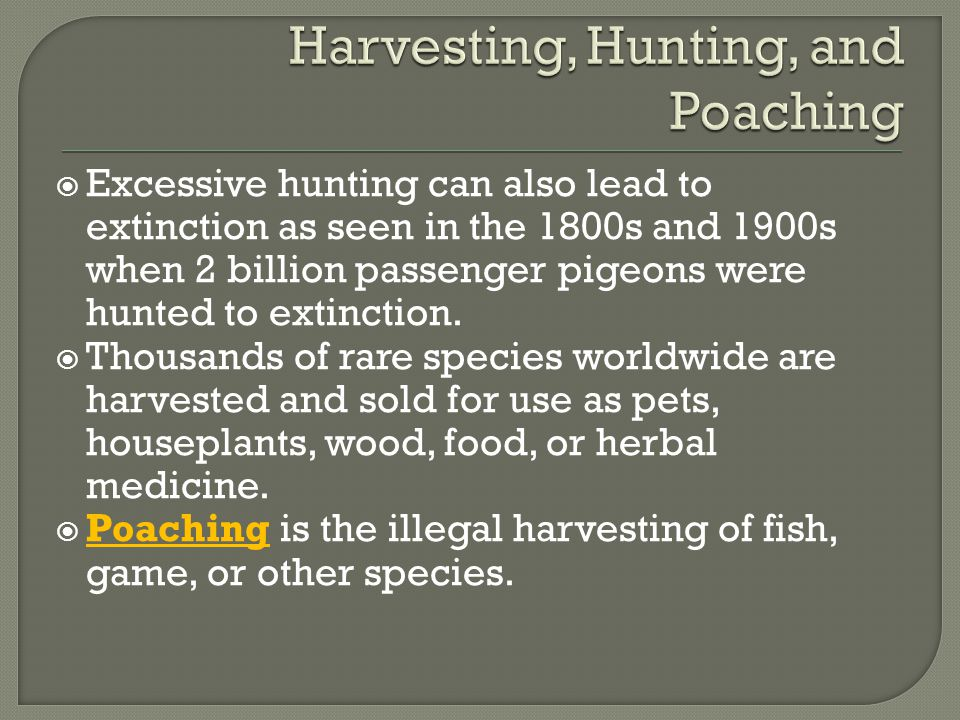 Harvesting, Hunting, and Poaching