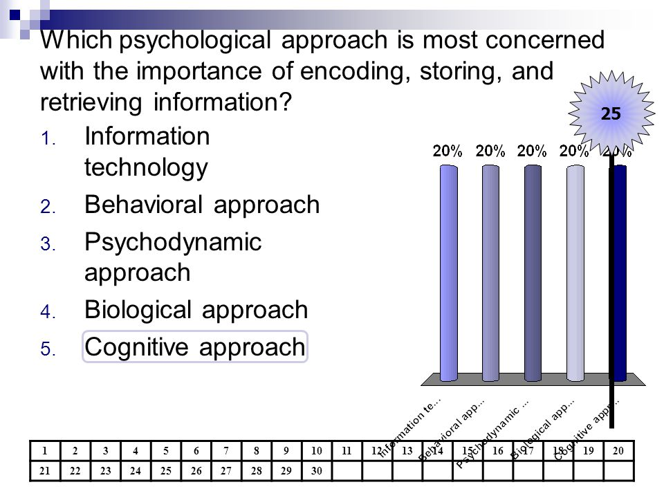 Information technology Behavioral approach Psychodynamic approach