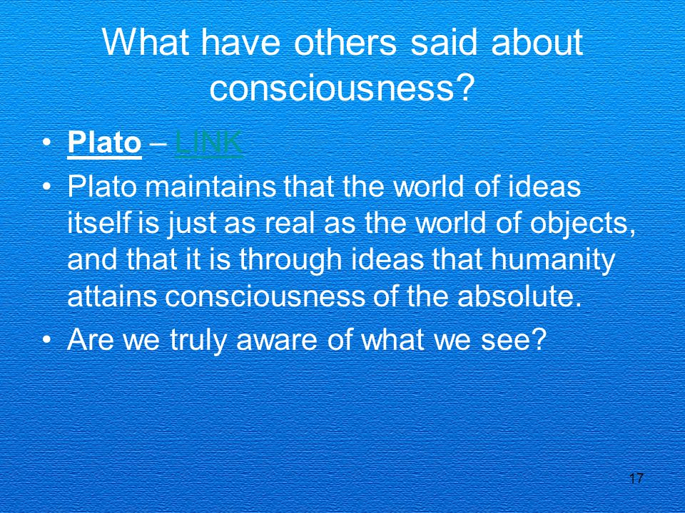 What have others said about consciousness