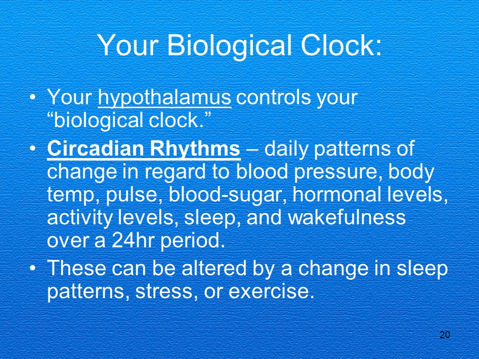 Your Biological Clock: