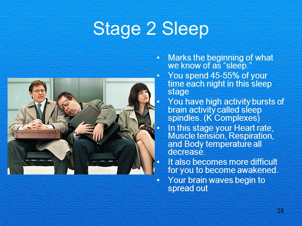 Stage 2 Sleep Marks the beginning of what we know of as sleep.