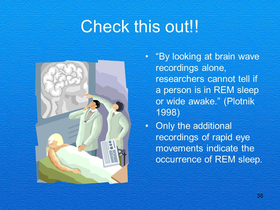 Check this out!! By looking at brain wave recordings alone, researchers cannot tell if a person is in REM sleep or wide awake. (Plotnik 1998)
