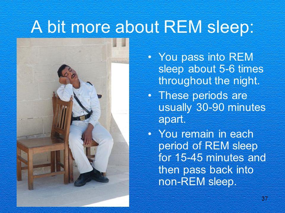 A bit more about REM sleep:
