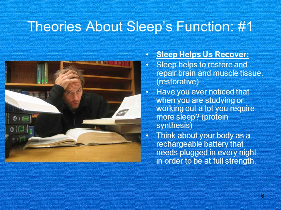 Theories About Sleep's Function: #1