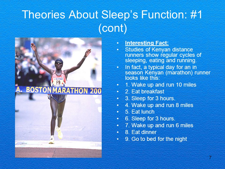 Theories About Sleep's Function: #1 (cont)