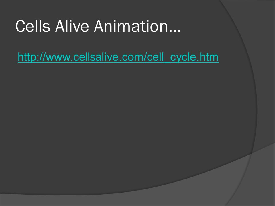 Cells Alive Animation…