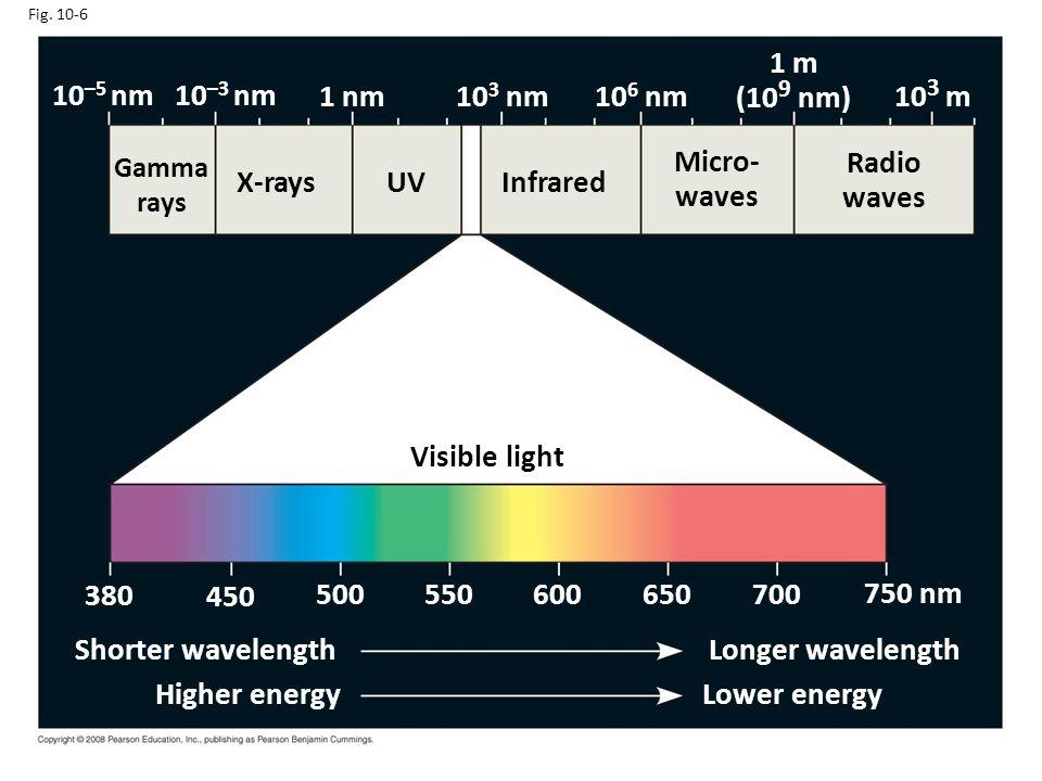 1 m (109 nm) 10–5 nm 10–3 nm 1 nm 103 nm 106 nm 103 m Micro- waves