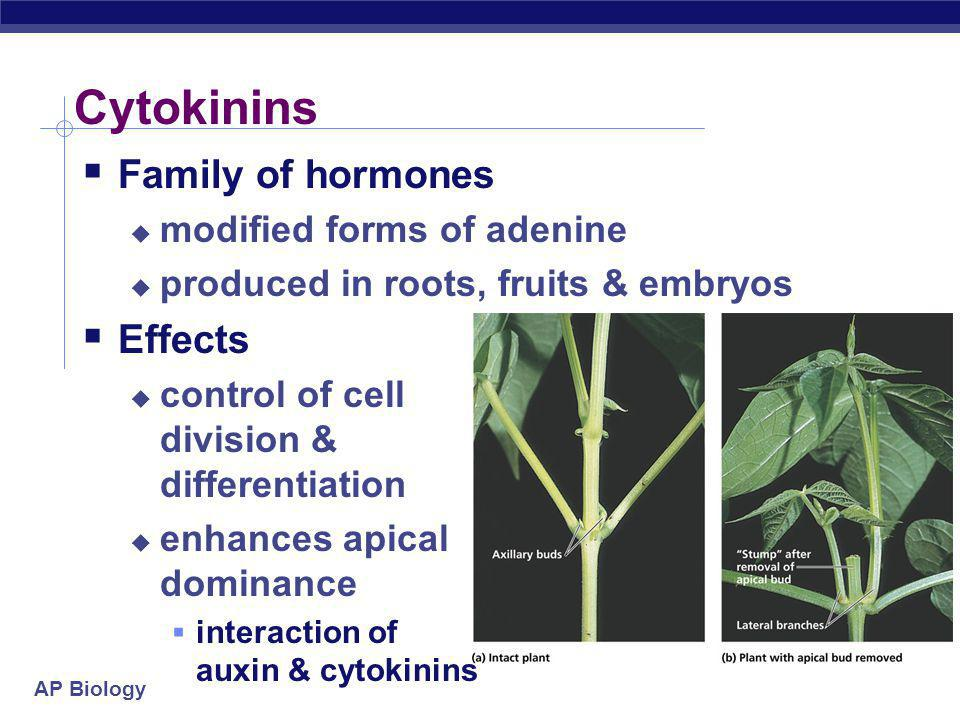 Cytokinins Family of hormones Effects modified forms of adenine