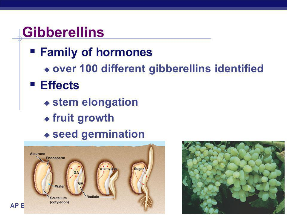 Gibberellins Family of hormones Effects