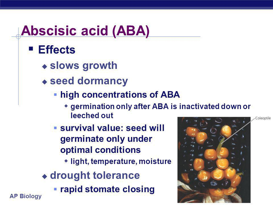 Abscisic acid (ABA) Effects slows growth seed dormancy