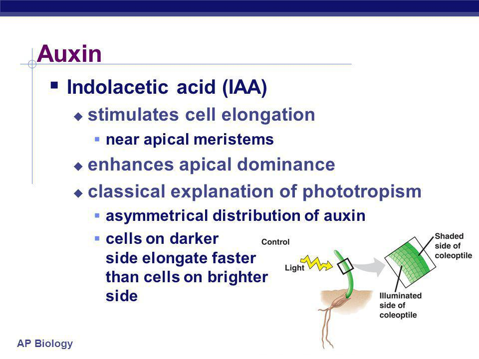 Auxin Indolacetic acid (IAA) stimulates cell elongation