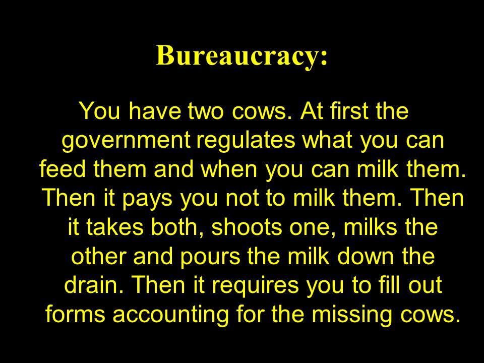 Bureaucracy: