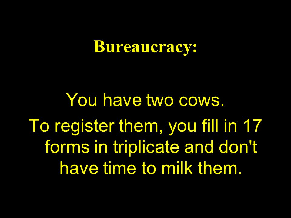 Bureaucracy: You have two cows.