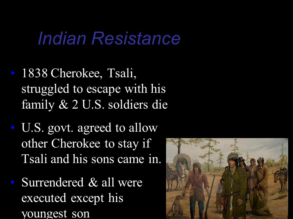 Indian Resistance 1838 Cherokee, Tsali, struggled to escape with his family & 2 U.S. soldiers die.