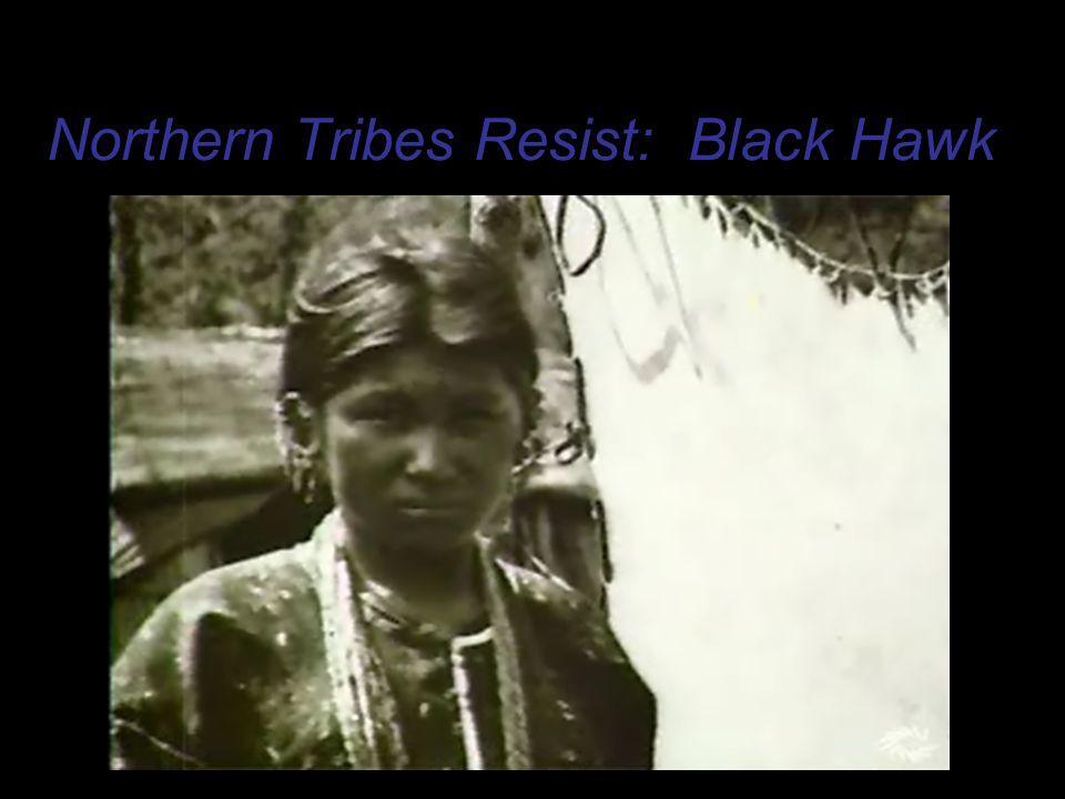 Northern Tribes Resist: Black Hawk