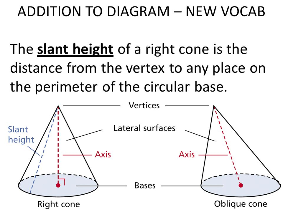 ADDITION TO DIAGRAM – NEW VOCAB