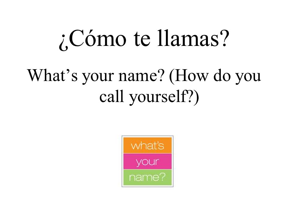 What's your name (How do you call yourself )