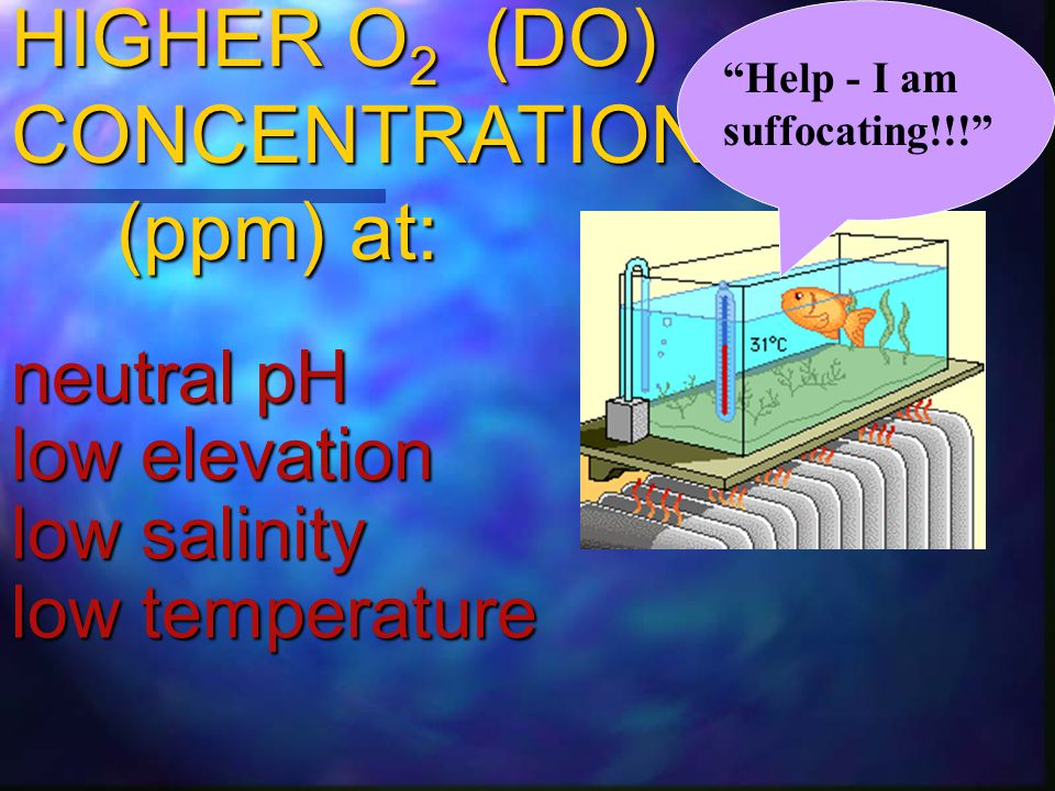 HIGHER O2 (DO) CONCENTRATION (ppm) at: