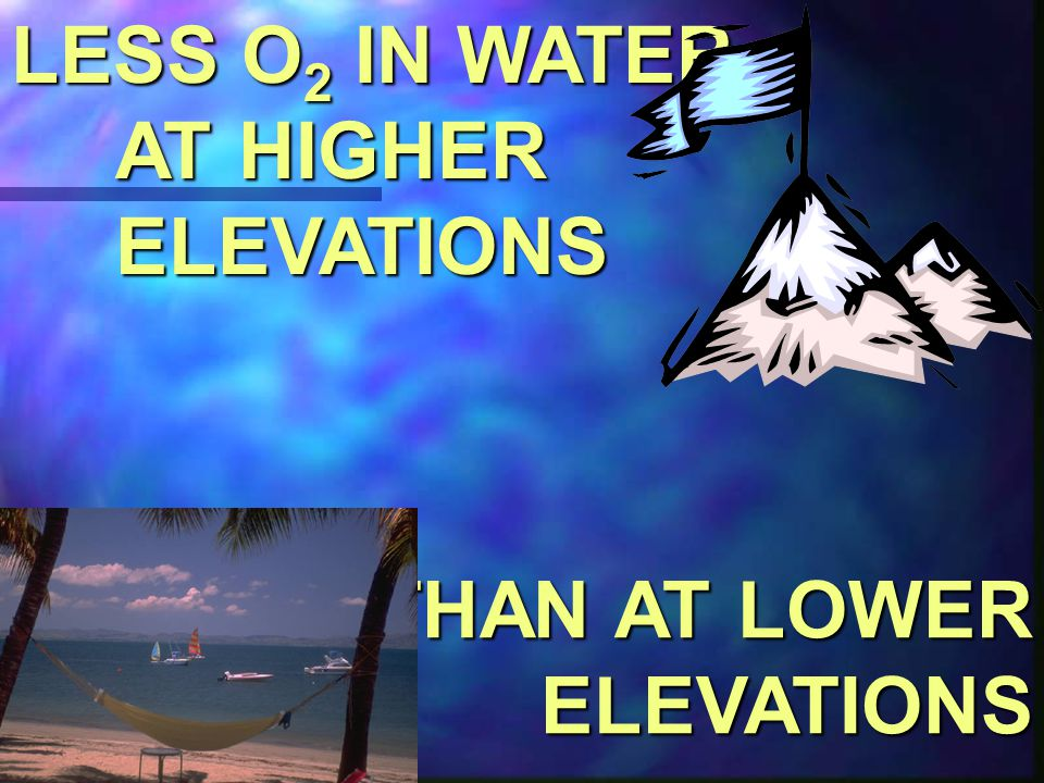 LESS O2 IN WATER AT HIGHER ELEVATIONS