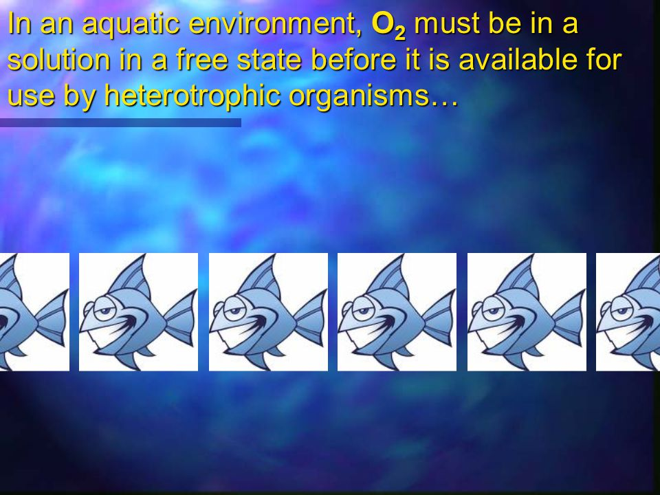 In an aquatic environment, O2 must be in a solution in a free state before it is available for use by heterotrophic organisms…