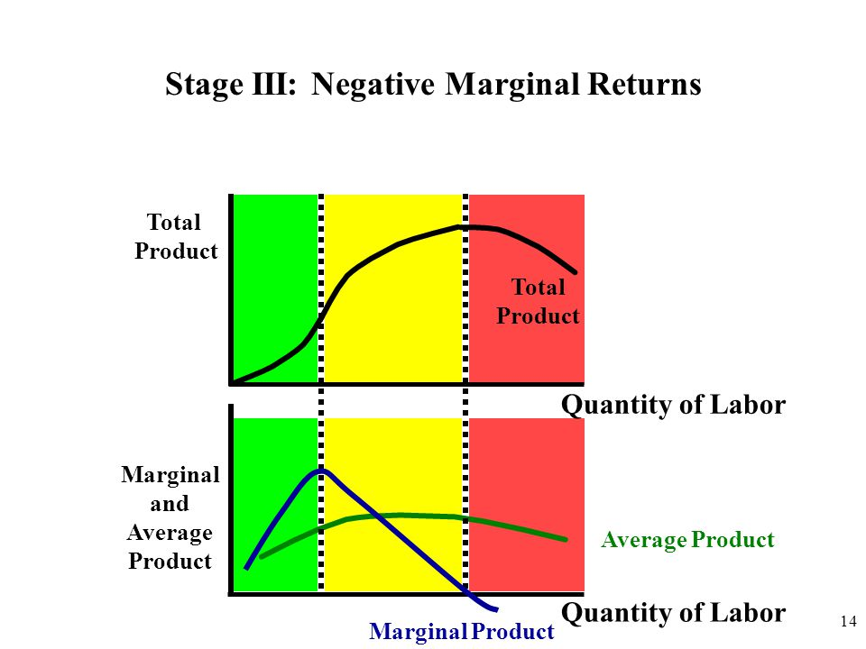 Stage III: Negative Marginal Returns Marginal and Average Product