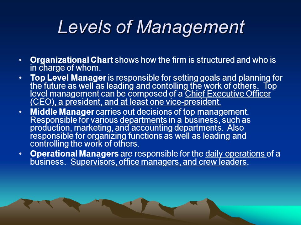 Levels of Management Organizational Chart shows how the firm is structured and who is in charge of whom.