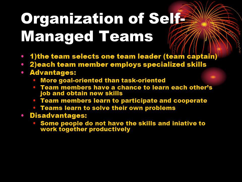 Organization of Self-Managed Teams
