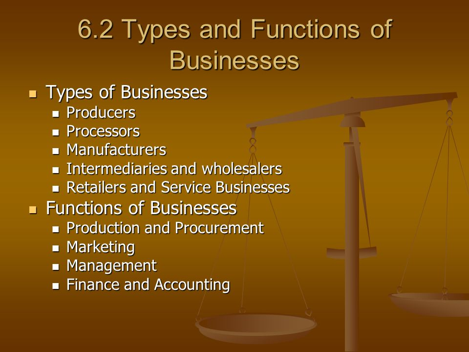 6.2 Types and Functions of Businesses