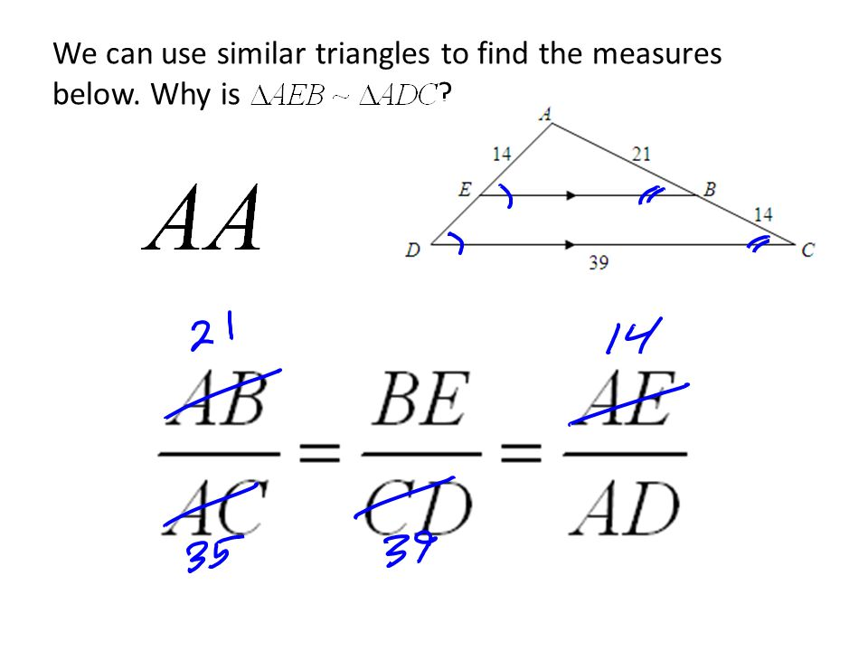 We can use similar triangles to find the measures below. Why is