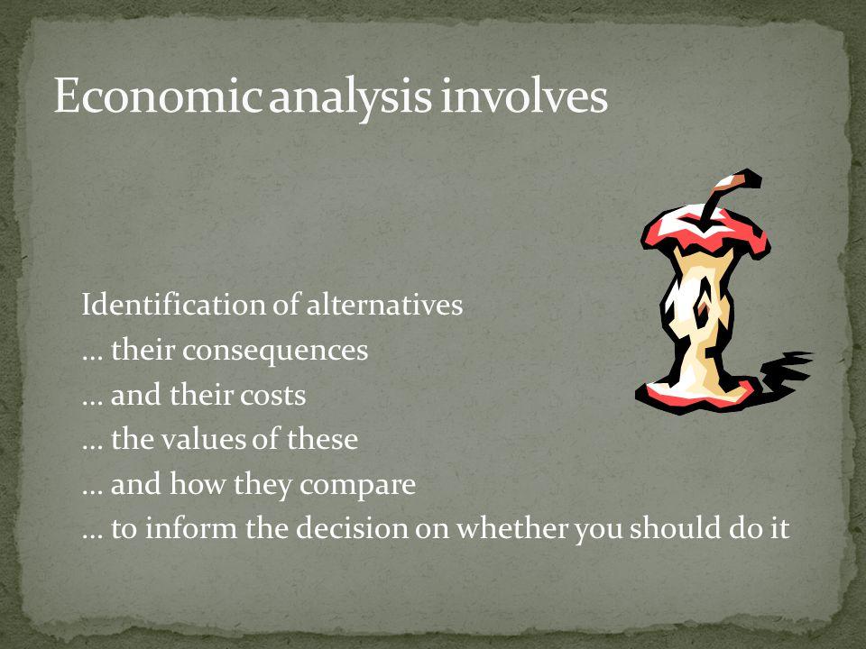 Economic analysis involves