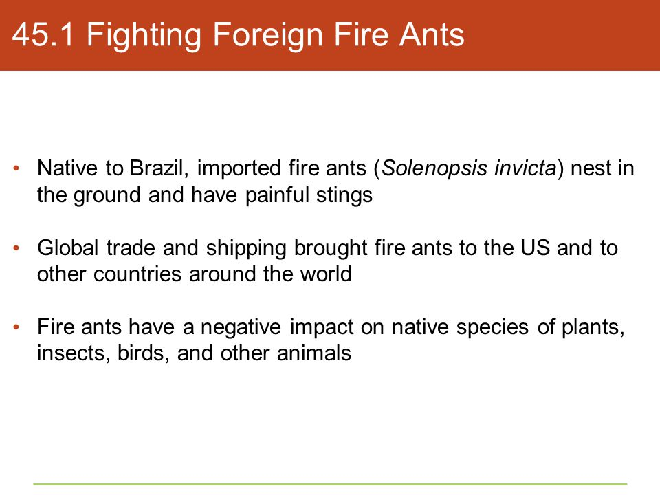 45.1 Fighting Foreign Fire Ants