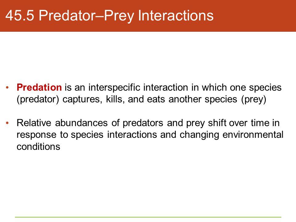 45.5 Predator–Prey Interactions