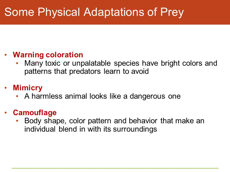 Some Physical Adaptations of Prey