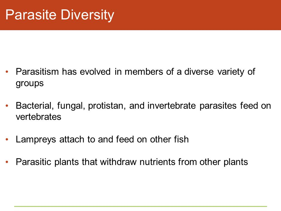 Parasite Diversity Parasitism has evolved in members of a diverse variety of groups.