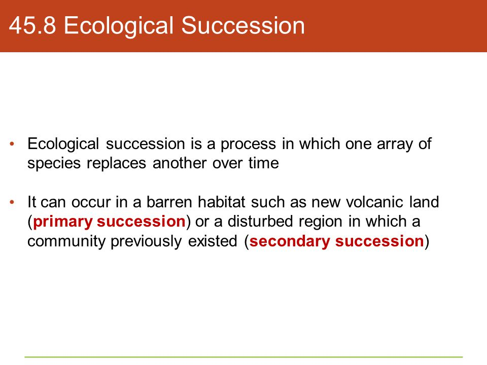 45.8 Ecological Succession