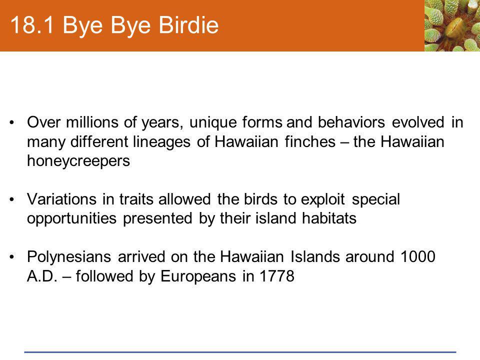 18.1 Bye Bye Birdie