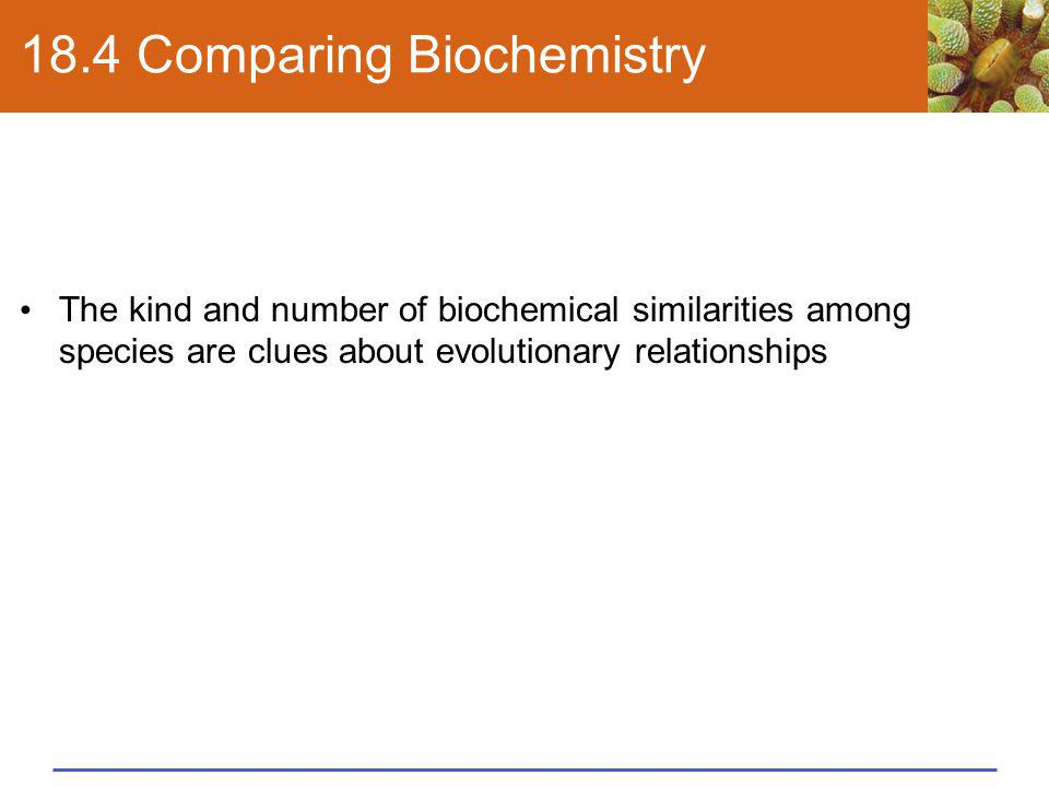 18.4 Comparing Biochemistry